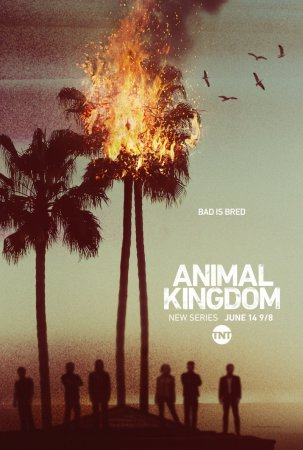 По волчьим законам / Animal Kingdom (Сезон 1-2) (2016-2017)